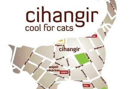 Cihangir Cool for Cats