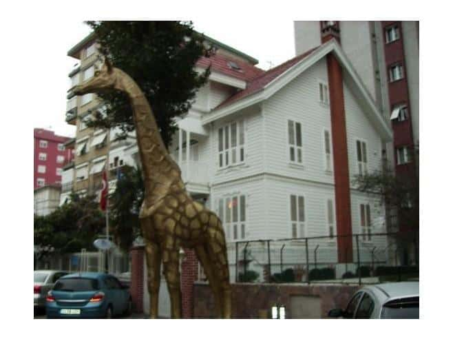 The old white mansion with the giraffes in front (Source: S. Leivers)