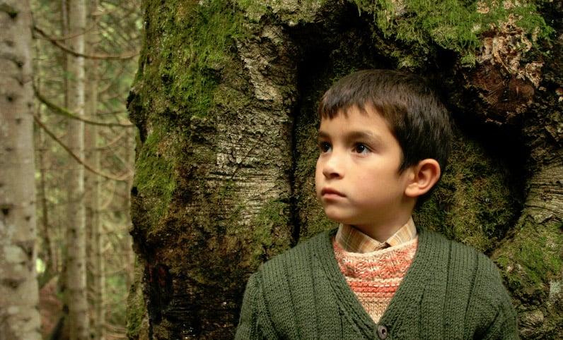 A still from Bal (Semih Kapanoğlu)