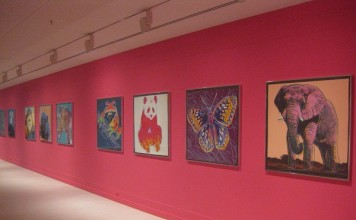Wildlife paintings from Andy Warhol exhibit at Pera Museum in Istanbul