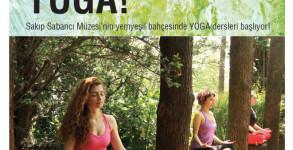 yoga_2014