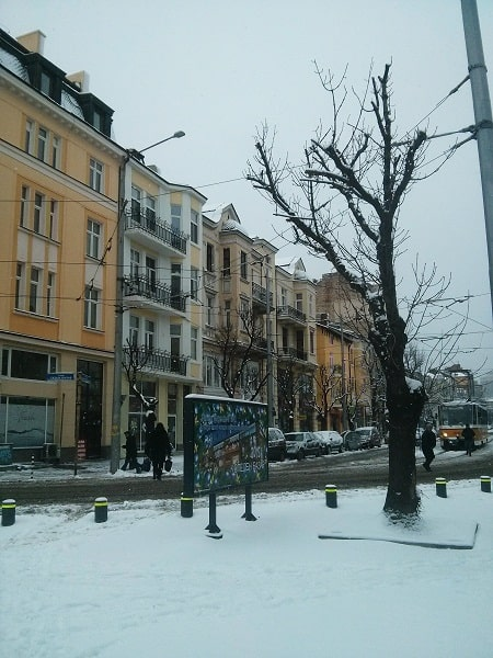 Sofia in the snow (Source: M. Oghia)