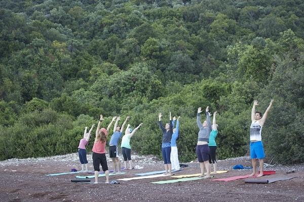 mdfv yoga